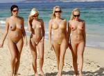 bikini or not bikini